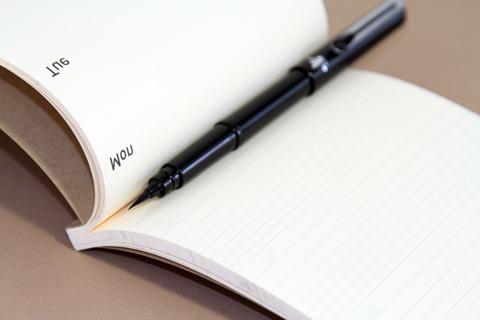 Ручка Pentel Brush pen на еженедельнике p0p0