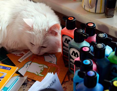 Заправка для фломатеров Molotow и кот Федор