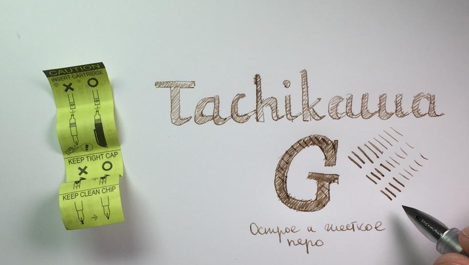 Рисунок, сделанный перьевой ручкой Tachikawa